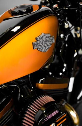 SPORTSTER® 48 ORANGE FISH